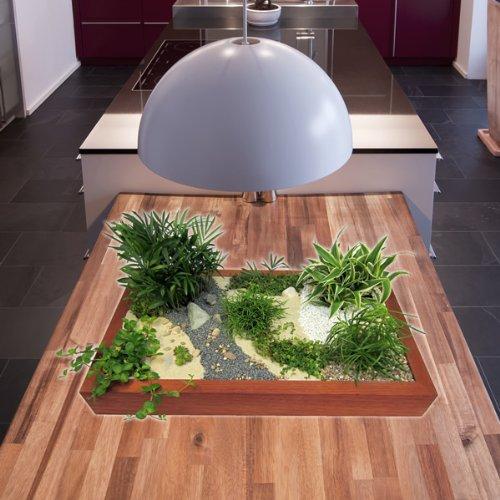 GREEN24 Miniaturgarten - Zimmergarten, kleine Mobile Gartenanlage - der Garten für die Wohnung - Standard Buche, dunkel gebeizt