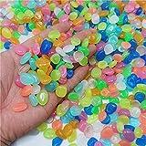 JIANFCR 600 Piezas de Rocas Brillantes, guijarros de jardín, Piedras Decorativas Que Brillan en Las Rocas oscuras, guijarros Luminosos para pasarelas, decoración al Aire Libre,Blanco