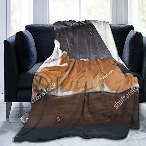 Qing_II Fleecedecke, Motiv: Englische Bulldogge Welpe, entspannend auf schwarzem Ledersofa, Flanell, Winterdecke, weich, warm, 127 x 165 cm, für Bett, Couch oder Büro.