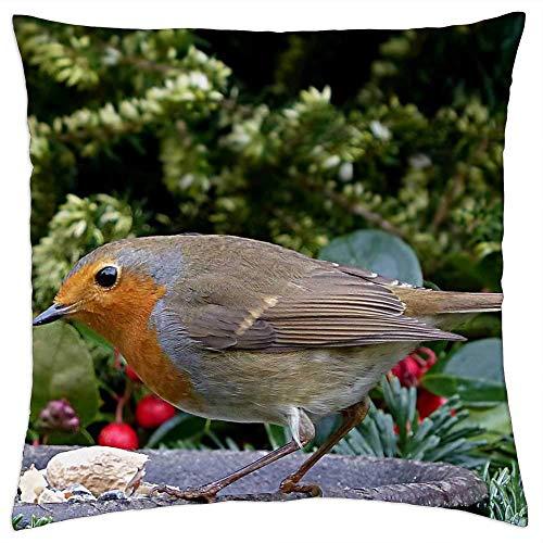 136 Fågel sångfågel Robin Erithacus rubecula trädgård dekorativa kuddar fodral soffkuddeöverdrag örngott gåva säng bil bo hem 45 x 45 cm