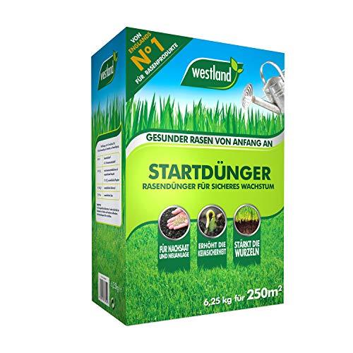 Westland Startdünger 733636, Rasendünger für sicheres Wachstum, Granulat, Dunkelbraun, 6,25 kg für 250m²