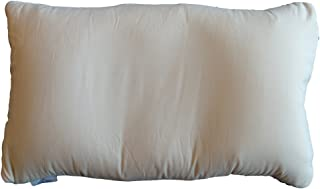 Big Sky International Dreamsleeper Deluxe Inflatable Pillow