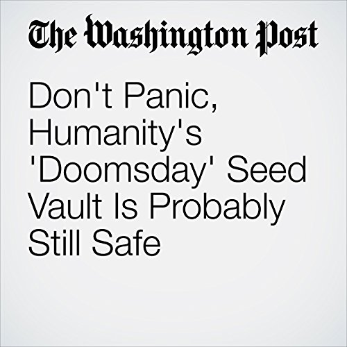 Don't Panic, Humanity's 'Doomsday' Seed Vault Is Probably Still Safe copertina