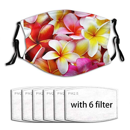 Plumeria Pink White Frangipani Tropical Hawaiian Flower Floral Fine Art Men Women Unisex Windproof and Dustproof Cloth Mouth Mask Face Cover with 6 Filters