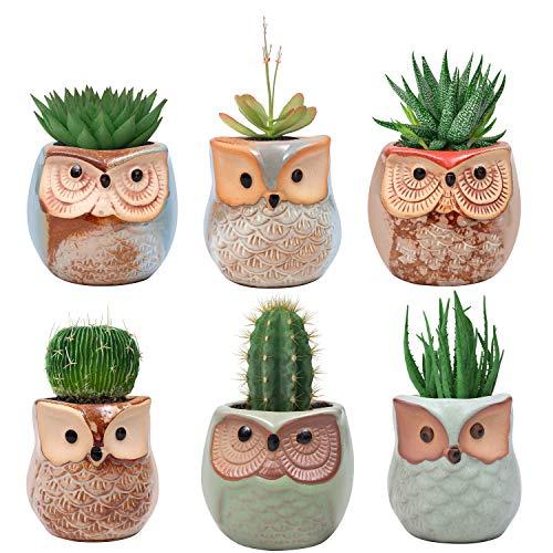 BELLE VOUS Pot de Fleur (Lot de 6) - (6 x 6.5 cm) Mini Pot de Plante en Céramique Forme de Hibou avec Trou de Drainage pour Les Plantes Grasses - Idéal pour Décoration de Bureau, Maison, Jardin