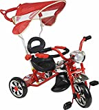 BSD Tricycle Enfant évolutif pour bébés avec contrôle Parental - Arti Classic W-11 - Rouge