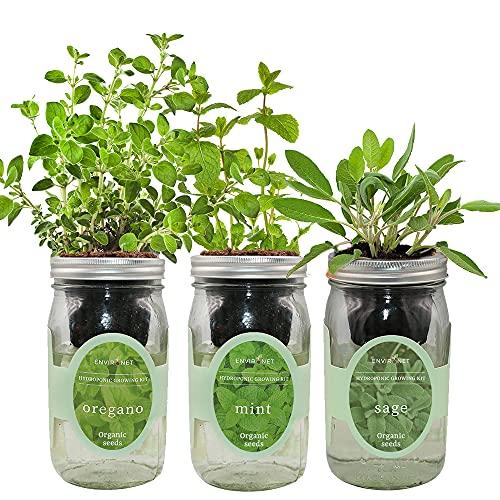 Environet Hydroponic Herb Growing Kit Set, Self-Watering Mason Jar Herb Garden...