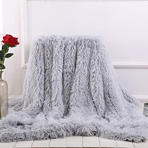 QEWRT Super Soft Long Faux Fur Coral Fleece Blanket Warm Elegant Cozy with Fluffy Throw Blanket Bed Sofa Blankets Gift