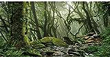 AWERT Foggy Forest Terrarium Background Stream Green Huge Tree Reptile Habitat Background Tropical Rainforest Aquarium Background 72x24 inches Durable Polyester Background