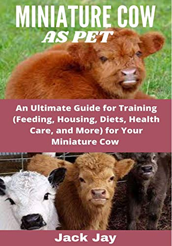 MINIATURE COW AS PET: An Ultimate Guide for Training (Feeding, Housing, Diets, Health Care, and More) for Your Miniature Cow