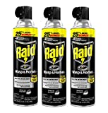 Raid Wasp and Hornet Killer, 17.5 OZ (Pack - 3)