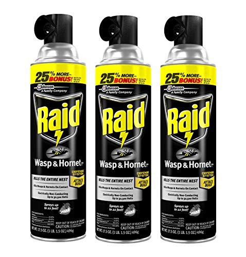 Raid Wasp and Hornet Killer, 17.5 OZ (Pack - 3)