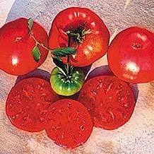 Crnkovic Yugoslavian Heirloom Tomato Seed
