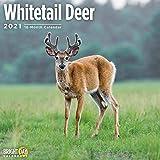 2021 Whitetail Deer Wall Calen...