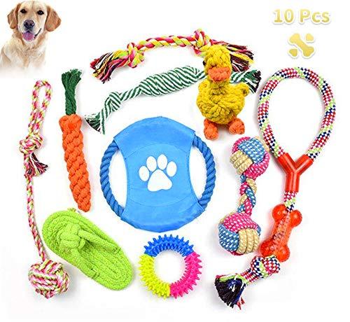 BaiYi Grupo de Juguetes para Perros Durable Masticable Cuerda Soledad Grupo de Juguete para Perrito Pequeño Medio Solitario para Mantener a su Perro Sano 10 Piezas