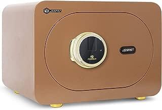 Jssmst Security Safe Box 1.0 Cubic Feet, Biometric Safe Fingerprint Safes for Home Office, 15.7 x 11.8 x 10.6 Inches, Gold