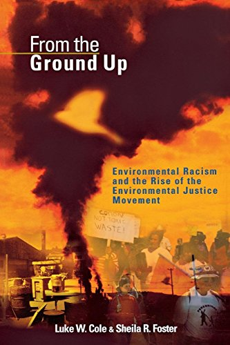 From the Ground Up: Environmental Racism and the Rise of the Environmental Justice Movement (Critical America)
