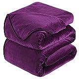 HOZY Kuscheldecke 220x240cm Decke Sofa,Warme Fleecedecke Als Tagesdecke/Sofaüberwurf/H&edecke/Flauschige Decke Violett