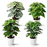 Kazeila Mini Plantas Artificiales de Interior en macetas, Planta de plástico Falso de 24 cm para decoración de casa / Oficina / Escritorio (4 Pack)