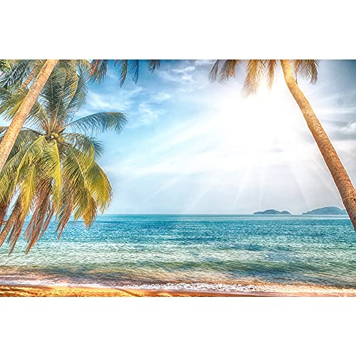 Sommer Fotografie Hintergr& Meer Strand Sand Foto Hintergr& Tropischer Seestern Muschel Palme Fotostudio A10 10x10ft/3x3m