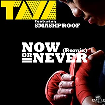 Now or Never (Remix) [feat. Smashproof]