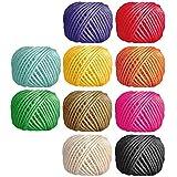 Voarge 10 rollos de cuerda natural de yute de 2 mm, para obras de arte, manualidades y manualidades, envoltura de regalo, decoración de botellas, exhibidor de imágenes y adornos (10 colores)