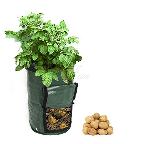 Learn More About Yard Waste Bags Organic Composting Vegetable Bag Growing Bag for Potatoes Waste Kit...