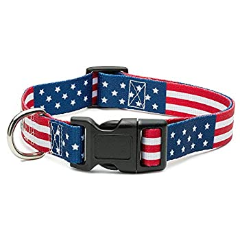 American Flag Dog Collar in 5 Different Sizes Classic  Medium