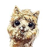 Afabel DIY-Linda Alpaca Pintar por Numeros,Digital Bricolaje Pintura al óleo para Colorear por números en Lienzo de Lino decoración de Arte- sin Marco 30x40cm
