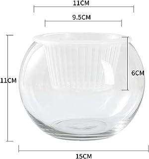 ZBBSHOP Planta hidropónica Botella de Vidrio jarrón de Vidrio Transparente contenedor rábano Verde Maceta Redonda pecera