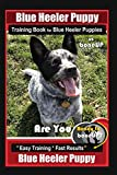 Blue Heeler Puppy Training Book for Blue Heeler Puppies By BoneUP DOG Training: Are You Ready to Bone Up?  Easy Steps * Fast Results Blue Heeler Puppy