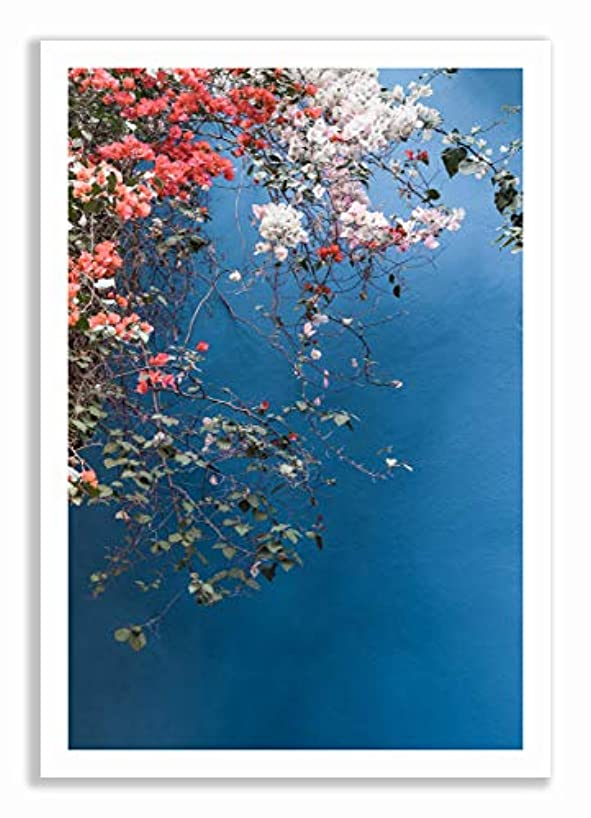 Bougainvillea 2 White Lacquer Wooden Frame with Mount, Multicolored, 50x70