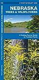Nebraska Trees & Wildflowers: A Folding Pocket Guide to Familiar Plants (Wildlife and Nature Identification)