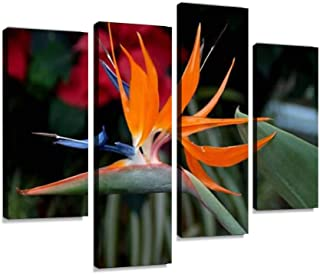 Bird of Paradise. Canvas Wall Art Hanging Paintings Modern Artwork Abstract Picture Prints Home Decoration Gift Unique Designed Framed 4 Panel