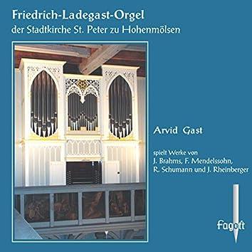 Brahms, Mendelssohn, Schumann & Rheinberger: Organ Works