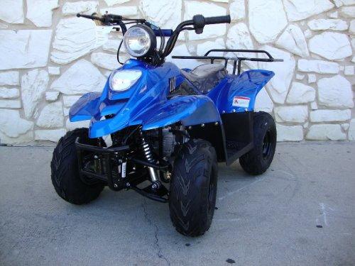 TAO ATV 110b Fully Automatic ATV 110cc 4 Stroke Engine