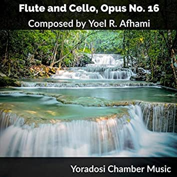 Duet for Flute and Cello, Op. No. 16