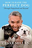 Cesar Millans How to Raise the Perfect Dog