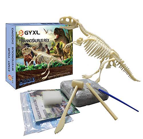 GYXL Dinosaur Fossil dig Toys, DIY Dinosaur Toys, Dino Dig Kit, Kids Science Education Dinosaur...