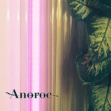 Anoroc