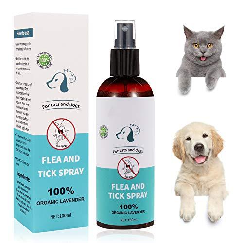 Flea Spray,Pulgas Spray,Anti Pulgas,Spray de Protección contra Pulgas, Pray Repelente de Pulgas de Lngredientes Naturales para Perros Pulgas Garrapatas, Apto para Perros y Gatos 100ml