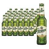 Staropramen Premium Cerveza Lager - 24 botellas de 0.33 ml - Total: 7920 ml