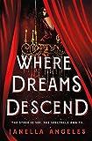 Where Dreams Descend: A Novel: 1 (Kingdom of Cards)