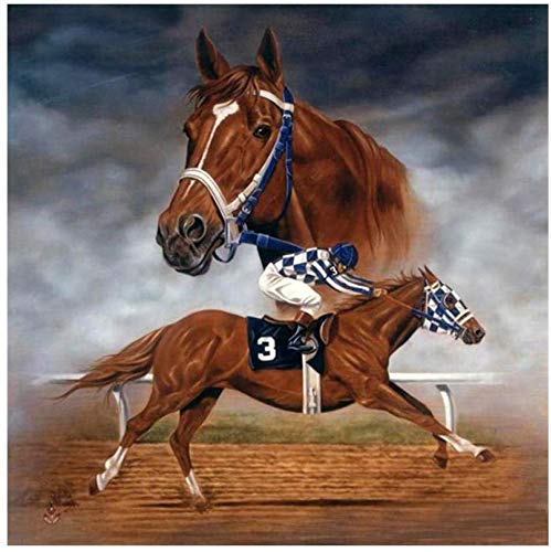 horse racing pictures - 6