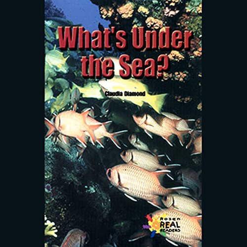 What's Under the Sea cover art