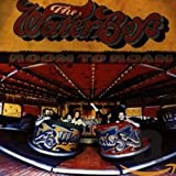 Songtexte von The Waterboys - Room to Roam