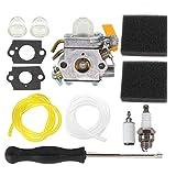 AISEN Carburateur 308054012 avec filtre à air pour taille-haie Ryobi Homelite 25 cc 26 cc 308054003 308054008 308054013 Zama C1U-H60 Carb 900952001