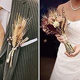 HUAESIN 100pcs Getrocknete Weizen Natürliche Trocken Weizen Deko Weizenstrauß Weizen Getrocknete Blumen für Hochzeit Mittelstücke Zuhause Balkon Party Tisch Vase Deko 40cm - 4