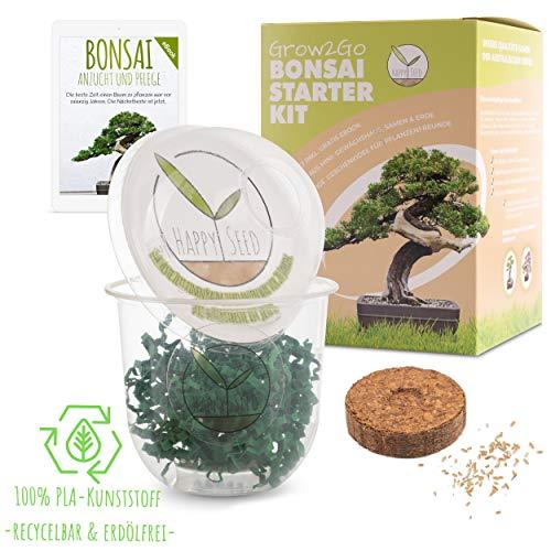 GROW2GO Bonsai Starter Kit Anzuchtset inkl. GRATIS eBook - Pflanzset aus Mini-Gewächshaus, Samen & Erde - nachhaltige Geschenkidee für Pflanzenfreunde (Australische Kiefer)