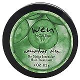 Chaz Dean Wen Cucumber Aloe Re Moist Intensive Hair Treatment for Unisex 4 oz Treatment